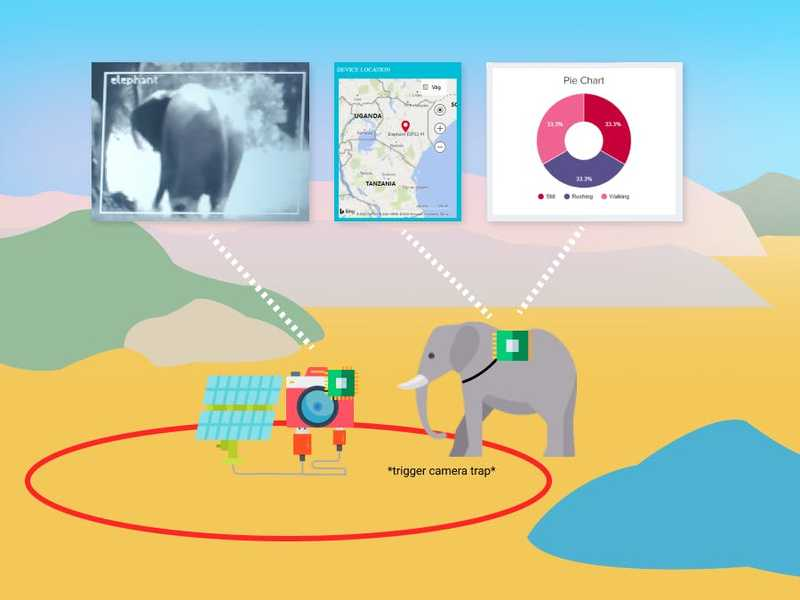 Can artificial intelligence give elephants a winning edge?